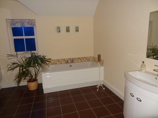 Mayobridge, UK: 1 des 2 salle de bain
