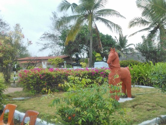 Golden Sun Hotel & Beach Resort : The lawn where you can have your food while the kids play