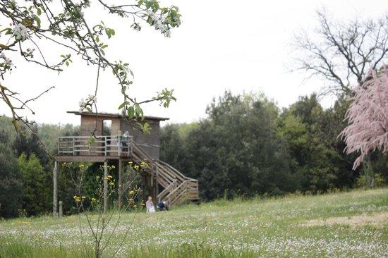 Castellare di Tonda Resort & Spa: intorno al casolare