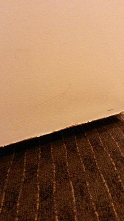 Ibis Sydney Darling Harbour: Paint peeling off the bottom of the door.