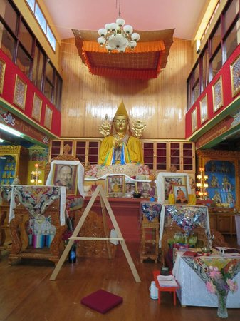 Tushita Meditation Centre : Inside the Gompa, where the meditation course is conducted.