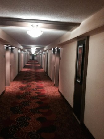Bay Harbor Hotel : hallway