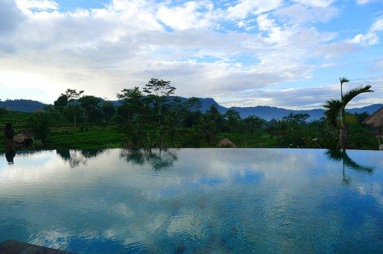 Sawah Indah Villa: Swim with Sideman nature view