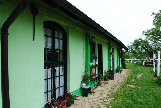 Perkov Salas