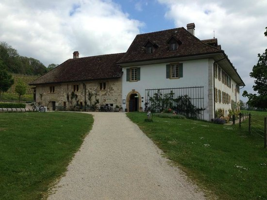 Klosterhotel St. Petersinsel : L'hôtel