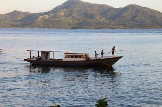 Bunaken Divers - Sea Breeze Dive Resort : wherever you look ...