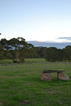 William Bay Country Cottages : The farm