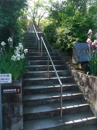 Shiga Naoya Former House : 入口