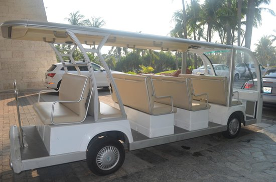The Grand Mayan Acapulco: shuttle... could be this or a van