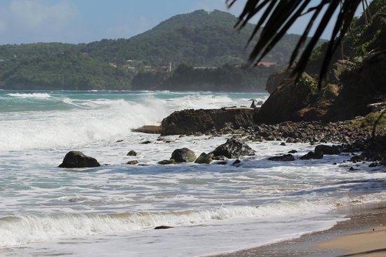 Petite Anse Beachfront Hotel & Restaurant Grenada: The north of Grenada is more rugged and natural than the south.