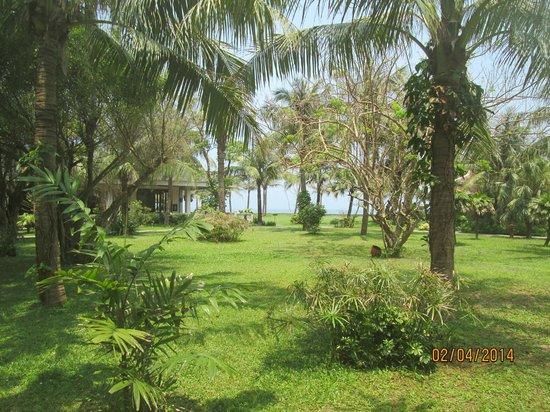 Ana Mandara Hue : Hotel garden