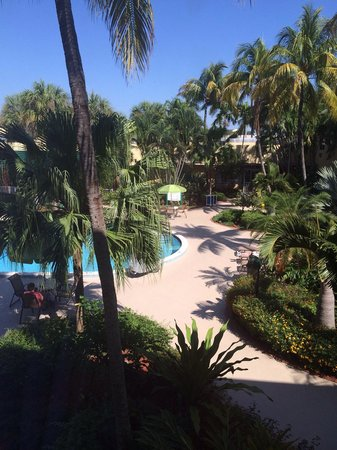 Holiday Inn Coral Gables - University: Nice view from our room!