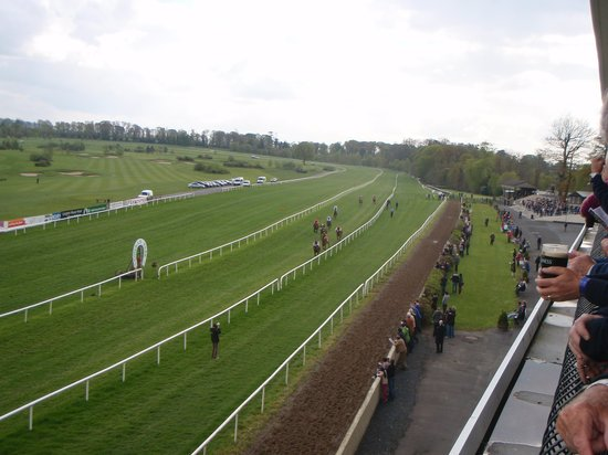 Gowran Park Racecourse: View from clubhouse balcony