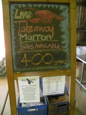 Marron Cafe : Marron anche take away