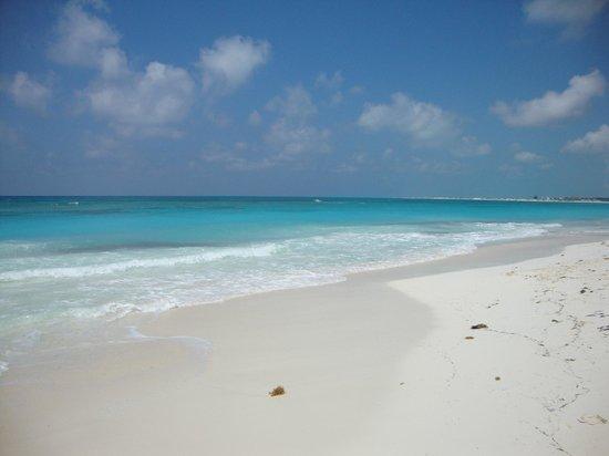 Gran Caribe Club Coral: Spiaggia villaggio