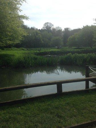 Bibury Trout Farm : the lakes