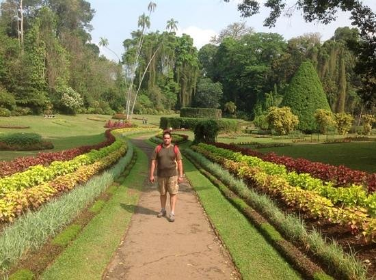 Royal Botanical Gardens: Landscaped Garden With Fern Cover (me)