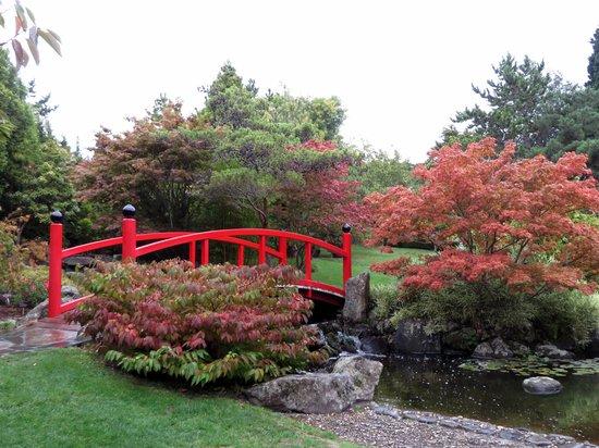 Royal Tasmanian Botanical Gardens: Japanese Gardens at Hobart RBG
