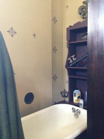 1884 Wildwood Bed and Breakfast Inn: King David room tub