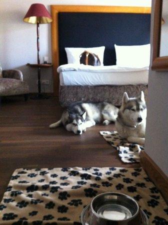 Anna Hotel: Camera con Siberian