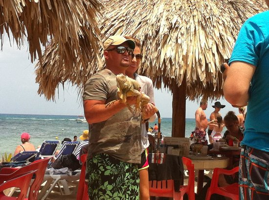 Mr Sanchos Beach Club Cozumel : Great place