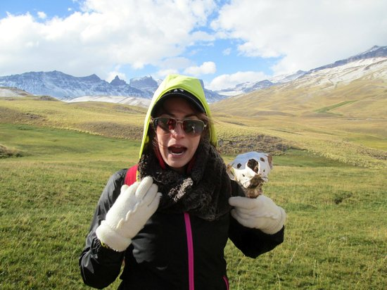 The Singular Patagonia: Hiking Excursion- found as skull