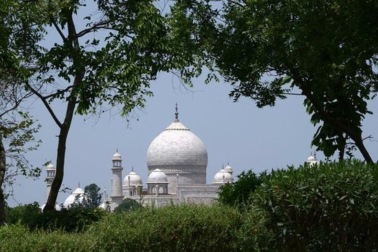 Taj Nature Walks