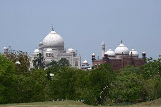 Taj Nature Walk : Taj seen from Lush green surroundings