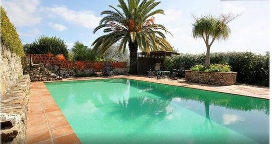 El Diplomatico Feo : large pool and sunning area