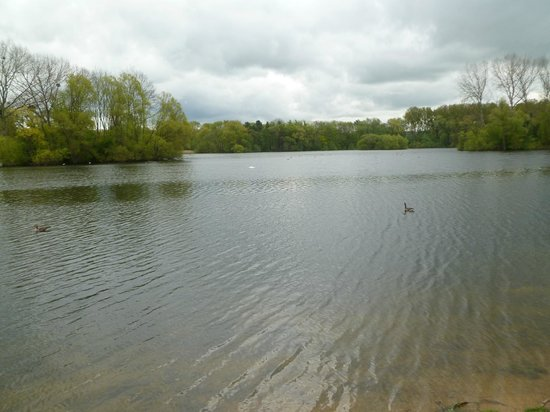 Frampton Court : THE LAKE IN THE GROUNDS TO THE REAR