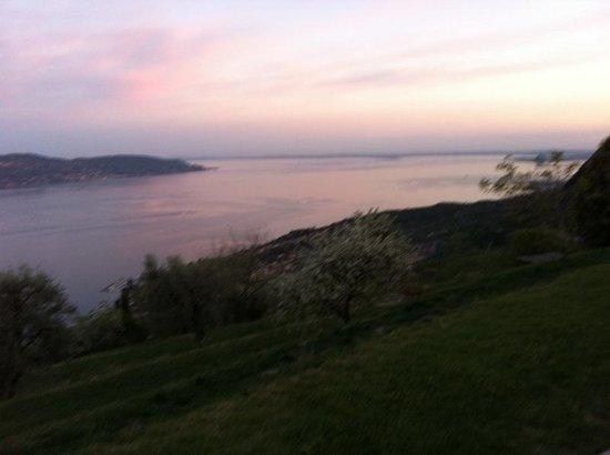 Lefay Resort & Spa Lago di Garda: Vista dal giardino