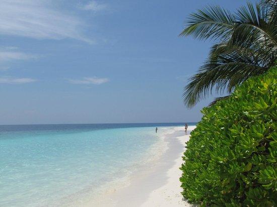 Fihalhohi Island Resort : NEAR WATERBUNGALOWS