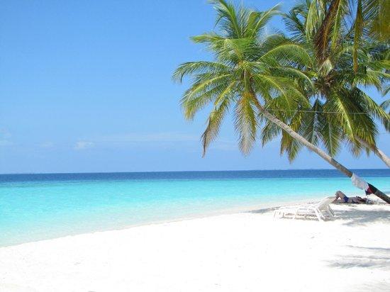 Hotel Fihalhohi Island Resort Homepage