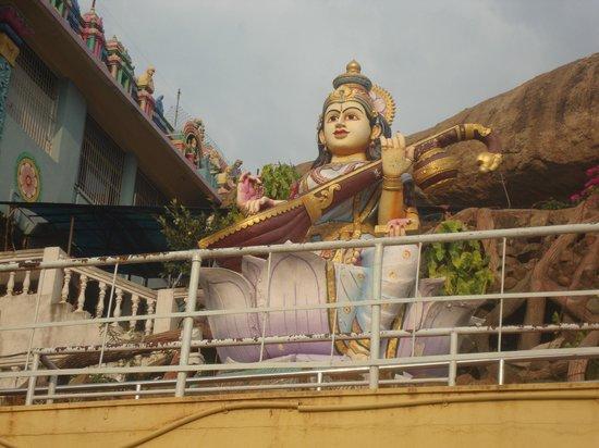 Sri Vidya Saraswathi Shani Temple: goddess saraswathi, wargal