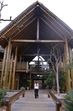 Kapama River Lodge: Muito especial este espaço ...