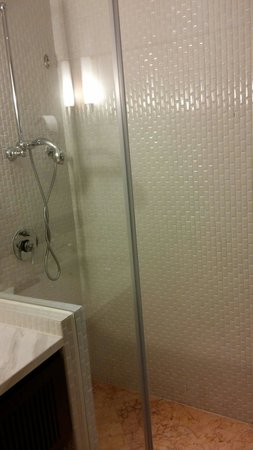 Rendezvous Hotel Singapore by Far East Hospitality : Shower booth