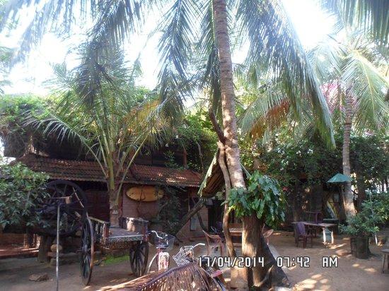 Ranga's Beach Hut: Rooms