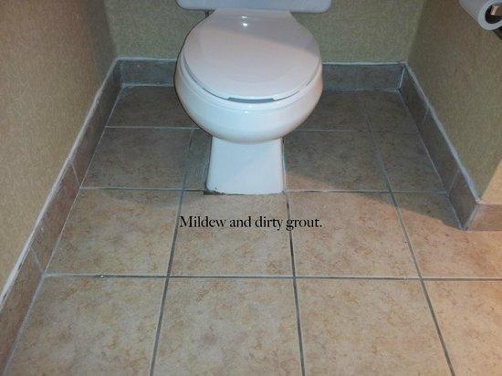 Quality Inn Tanglewood: Toilet/ Bathroom