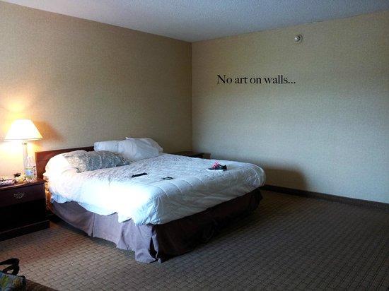 Quality Inn Tanglewood: Room