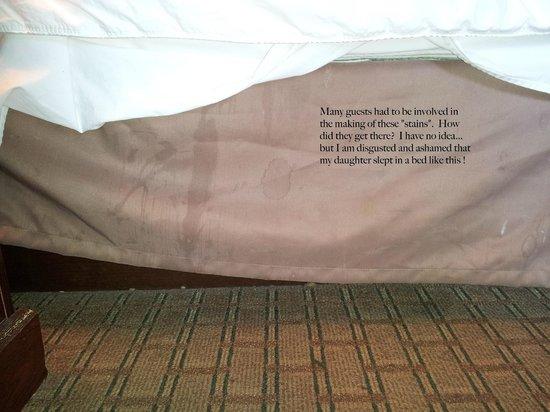 Quality Inn Tanglewood: Dust Ruffle