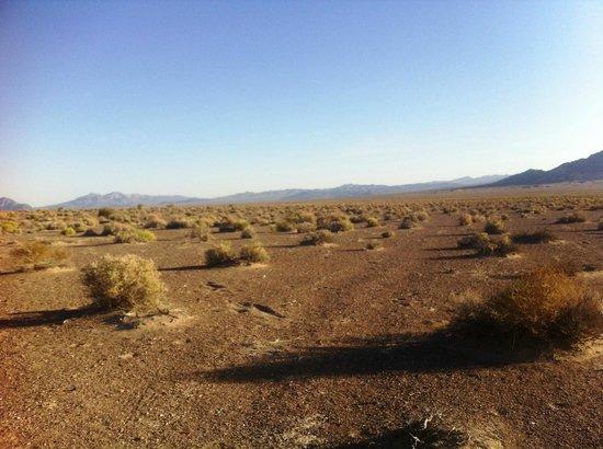 Longstreet Hotel & Casino: Deserto di fronte