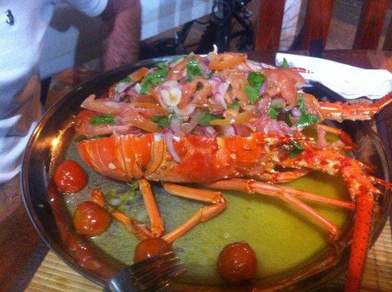Isola Sarda: Aragosta alla catalana