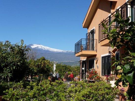 B&B Villa Maria Giovanna : The breakfast terrace at B&B Villa Naria Giovanna