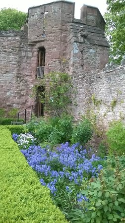 Wilton Castle: One of the towers with blooming Bluebells