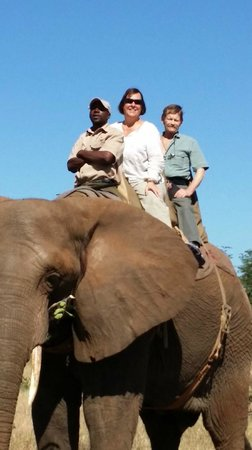 The Elephant Camp: Riding with Coco