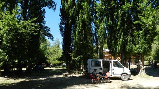 Quem Quem: Zona para acampar del camping con unos álamos hermosos
