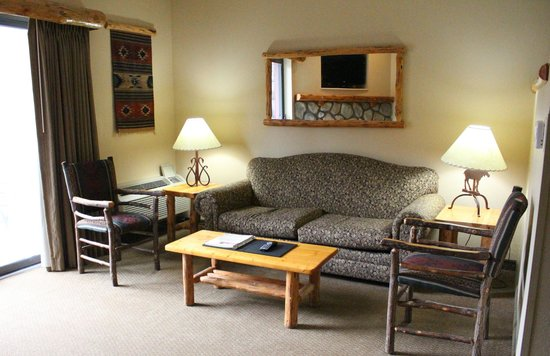 Great Wolf Lodge: Sleeper Sofa
