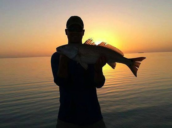 South Florida Fishing LLC: A redfish at sunset.