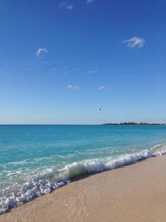 Club Med Columbus Isle: la spiaggia