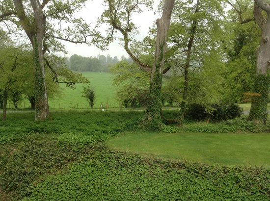 Farnham Estate Spa and Golf Resort : Our lovely green view from our HUGE window!